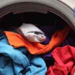 علت خشک نشدن لباس ها در ماشین لباسشویی